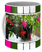 Unusual Simultaneous Bloomers 5 Coffee Mug