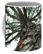 Up Pine Coffee Mug