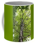 Up The Oak Tree Coffee Mug