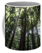 Up Through The Trees Coffee Mug