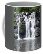 Upper Beaver Falls Coffee Mug