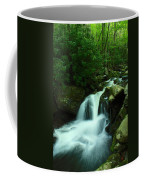 Upper Lynn Camp Prong Cascades Coffee Mug