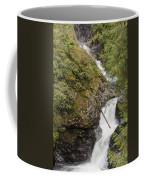 Upper Twin Falls Steps Coffee Mug