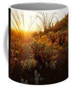 Usa, Arizona, Sonoran Desert, Ocotillo Coffee Mug