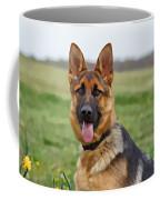 Uzara IIi Coffee Mug