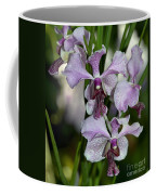 Vanda Emma Van Derventer 6906 Coffee Mug