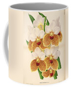 Vandas Anderiana Coffee Mug by Philip Ralley