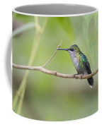 Vanishing In Nature.. Coffee Mug