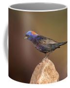 Varied Bunting Coffee Mug
