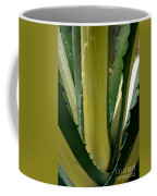 Variegated Agave Coffee Mug