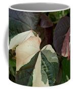 Variegated Coffee Mug