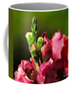 Variegated Snapdragon Coffee Mug