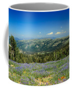Vast View And Lupine Coffee Mug by Robert Bales