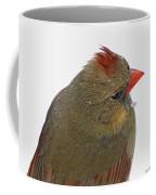 Veiw From Above Coffee Mug
