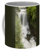 Vermillion River Falls 1 Coffee Mug