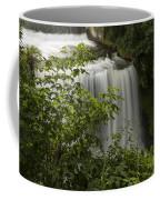 Vermillion River Falls 2 A Coffee Mug