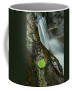 Vermont Aspen Leaf Waterfall Camels Hump Duxbury Coffee Mug