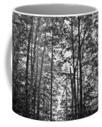 Vermont Forest Sunrise Ricker Pond Black And White Coffee Mug