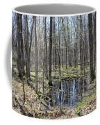 Vernal Pool 2 Coffee Mug