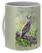 Verreauxs Eagle-owl Bubo Lacteus Coffee Mug