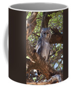 Verreauxs Eagle Owl In Tree Coffee Mug