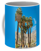 Very Tall Fan Palms In Andreas Canyon In Indian Canyons-ca Coffee Mug
