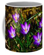 Vibrant Crocuses Coffee Mug