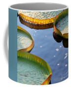 Victoria Waterlilies Coffee Mug