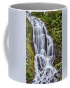 Vidae Falls Coffee Mug