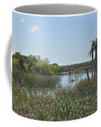 Viera Wetlands Coffee Mug