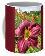 Viette's Daylily. Dark Purple 01 Coffee Mug