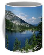 View At Roman Nose Peak Coffee Mug