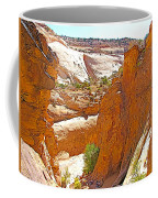 View From Above Capitol Gorge Pioneer Trail In Capitol Reef National Park-utah Coffee Mug