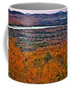 View From Mccauley Mountain Coffee Mug