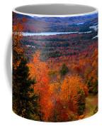 View From Mccauley Mountain II Coffee Mug