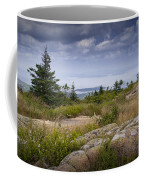 View From Top Of Cadilac Mountain In Acadia National Park Coffee Mug