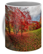 View Of Autumn Coffee Mug