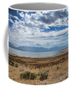 View Of Wasatch Range From Antelope Island Coffee Mug