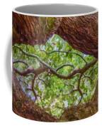 View Through Angel Oak Tree Coffee Mug