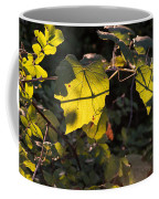Vine Leaves At Sunset Coffee Mug