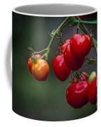 Vine Ripe Goodies  Coffee Mug by Marvin Spates