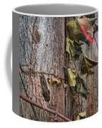 Vines And Barns Coffee Mug
