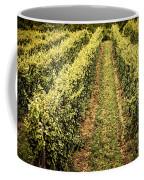 Vines Growing In Vineyard Coffee Mug