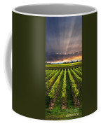 Vineyard At Sunset Coffee Mug
