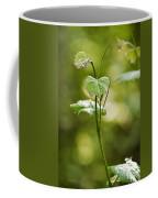Vineyard Vine Coffee Mug