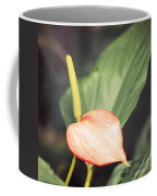 Vintage Anthurium Coffee Mug