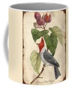 Vintage Bird Study-d Coffee Mug