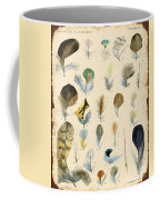 Vintage Feather Study-c Coffee Mug