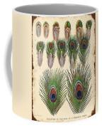 Vintage Feather Study-jp2084 Coffee Mug