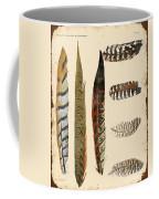 Vintage Feather Study-jp2085 Coffee Mug